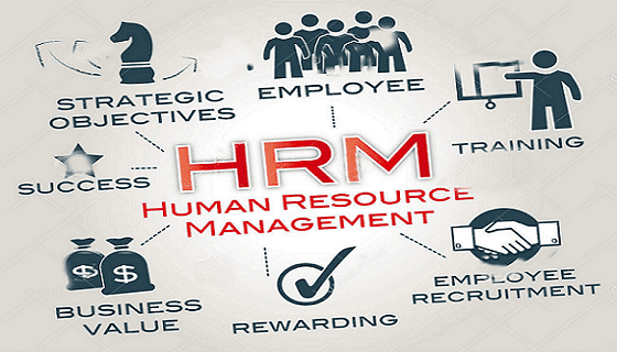 human resource management hrm,chrmp,phri,sphr